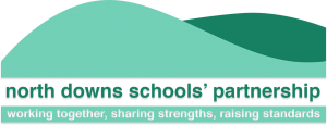 NSDP logo
